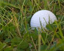 golf-ball-rough
