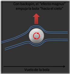 efectomagnus2